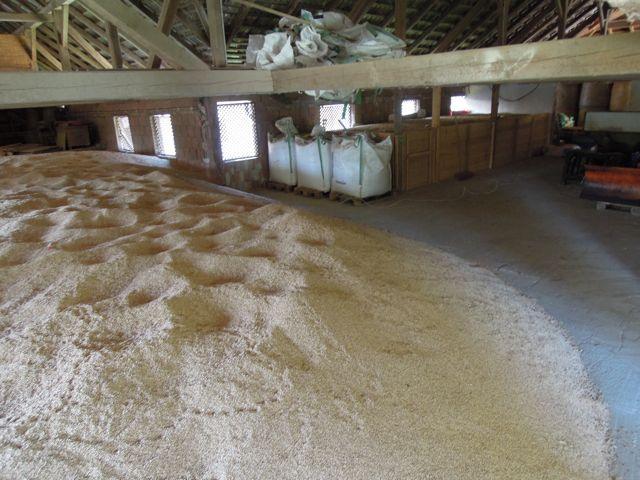 Bio-Getreide, Bio-Futtermittel