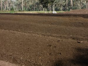 Kompostplatz als Schlüssel zur Verbesserung der Bio-Böden