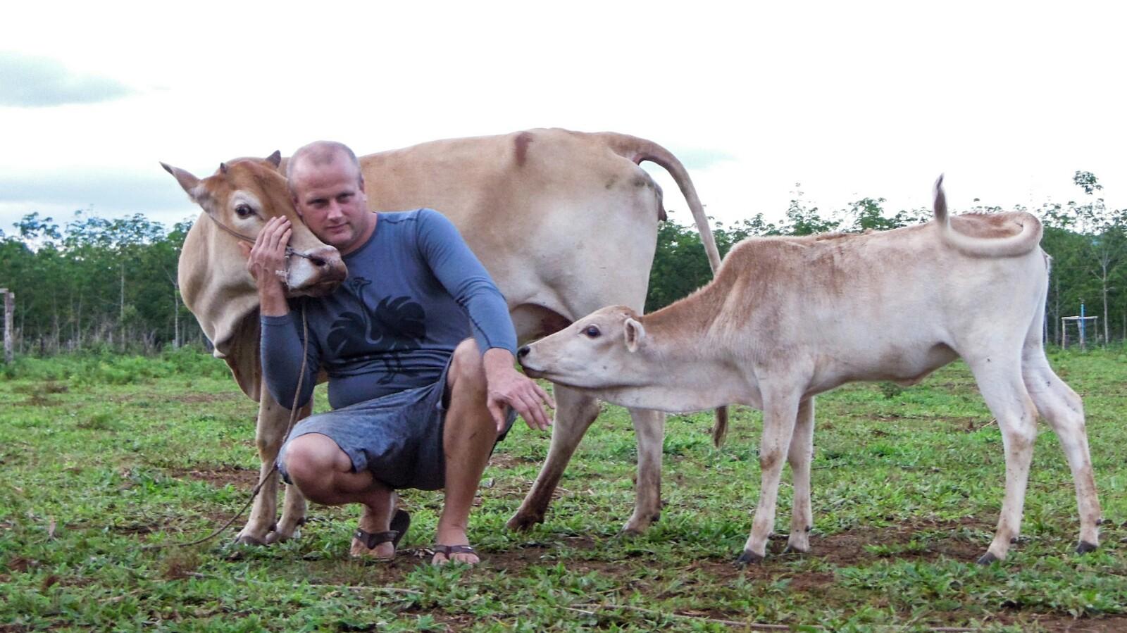 Rinder Michael Schneider Mai Savanh Lao organic17
