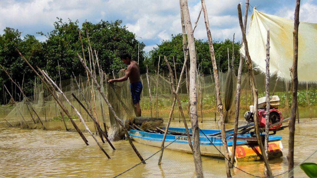 Tonle Sap Fischfang Fischreusen Fischer