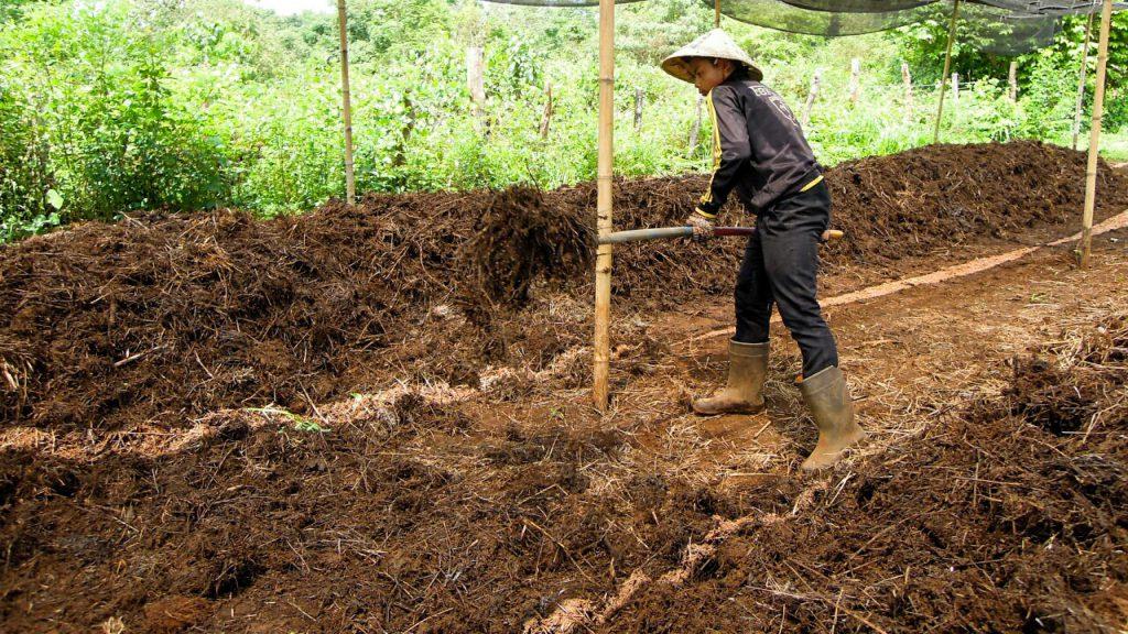Komposthaufen zweites Umsetzen Mai Savanh Lao Laos