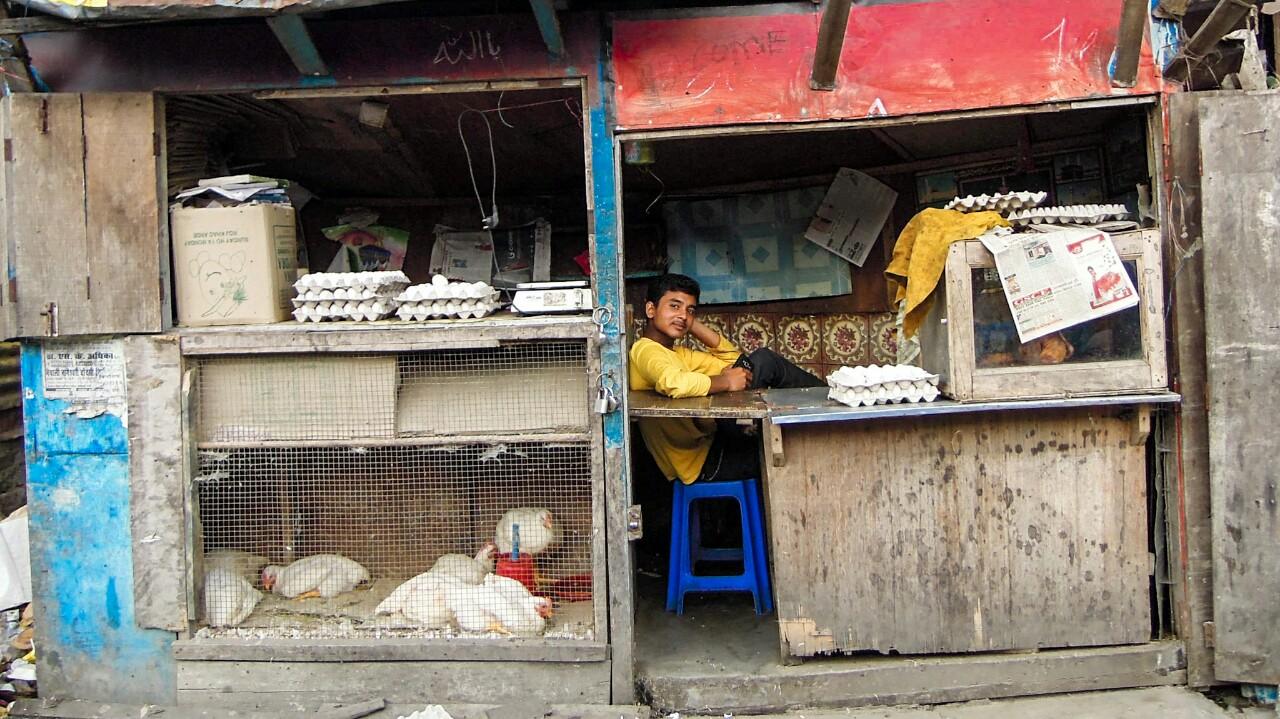 Hühnerverkäufer in Kurseong