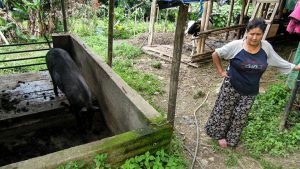 Biobetrieb Bhutia in Upper Chumbong (c) Reinhard Gessl