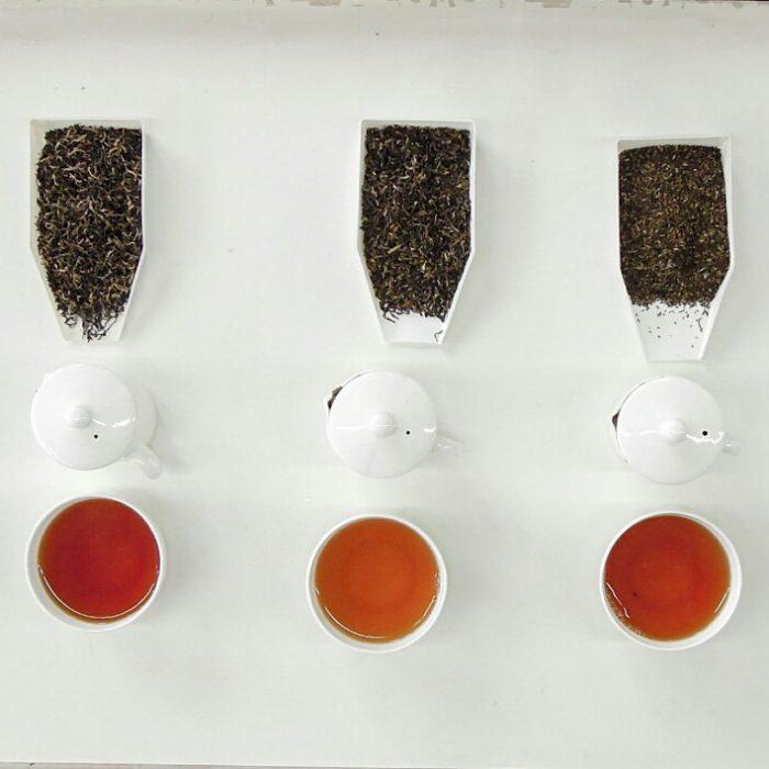 Tee Kulturgeschichte Verkostung (c) Reinhard Gessl
