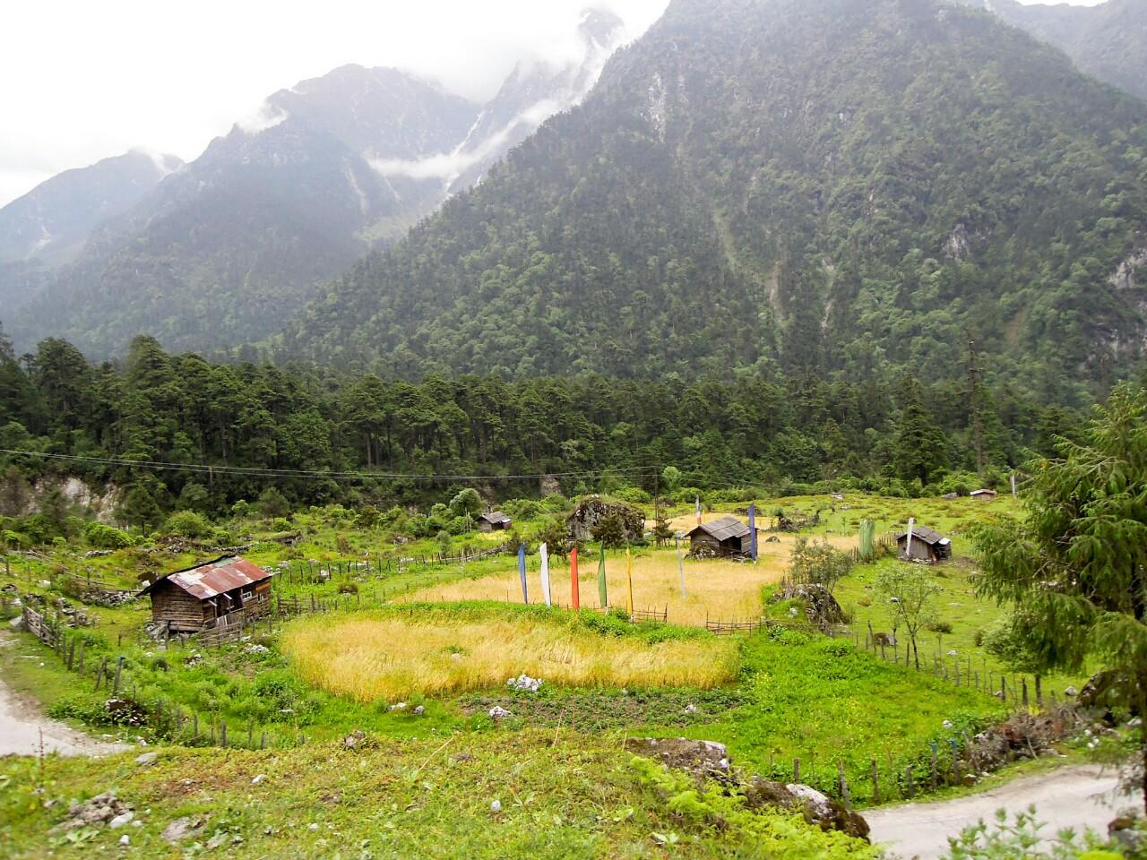 Biolandbau in Bergregion Nord Sikkim (c) Reinhard Gessl organic17.org