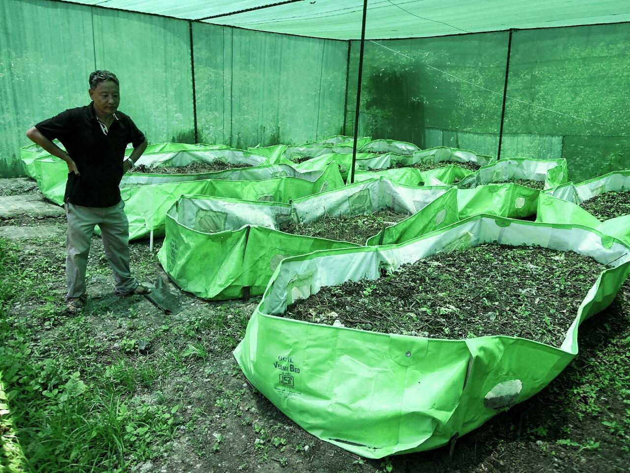 Pintso Wangyal, Mazitar, vor Kompostsäcken (c) Reinhard Gessl organic17.org