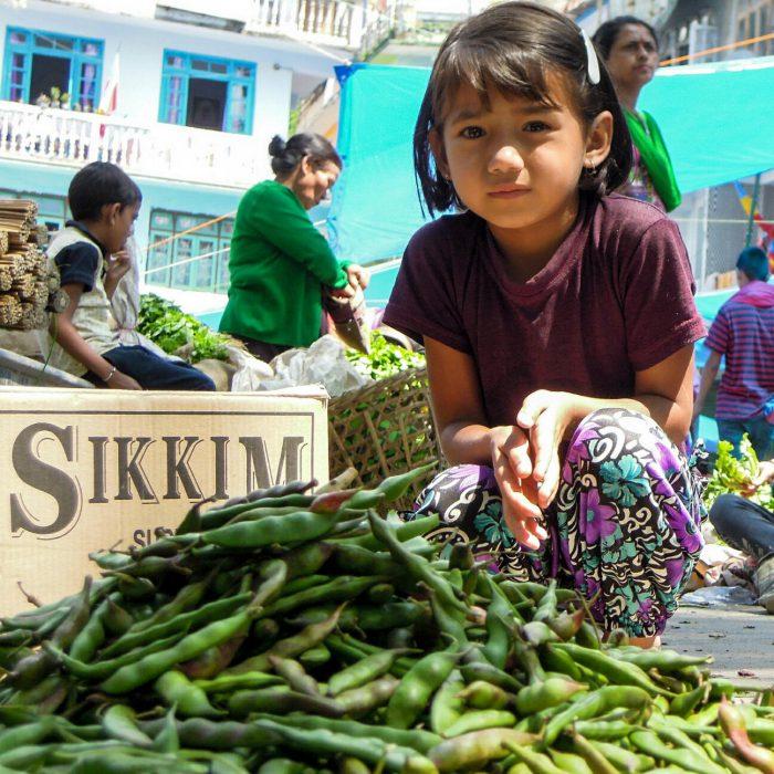 Geyzing market (c) Reinhard Gessl organic17