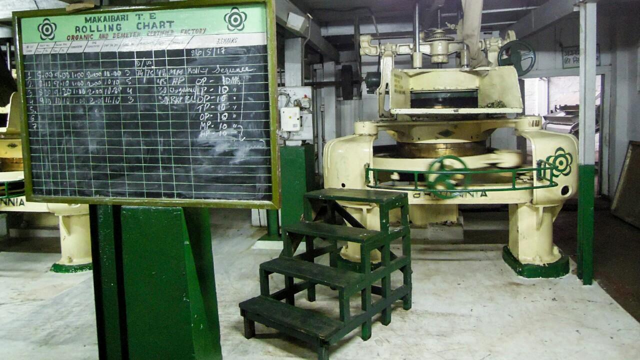 Darjeeling Tee biodynamisch Makaibari Rollmaschine (c) Reinhard Gessl