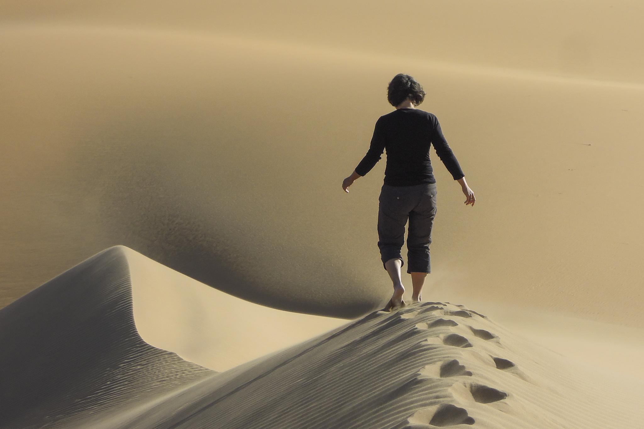 Sanddüne Ägypten Wüste Sandwüste Westliche Oase Spuren Forschungs-Sabbatical organic17