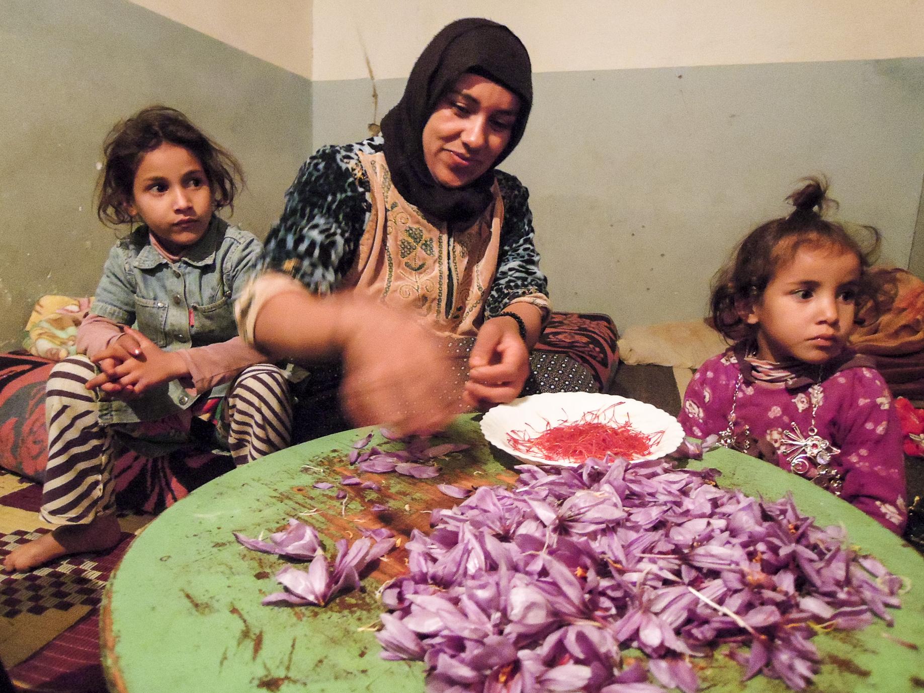 Marokko, Sabbatical, Berberin, Safran, organic17