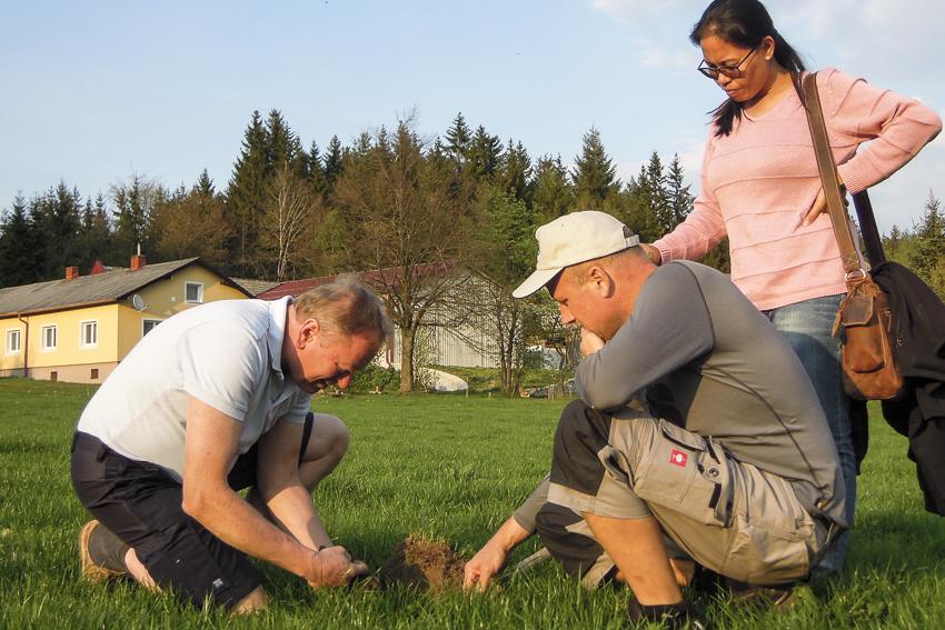Boden aufbauen, Bodenprobe