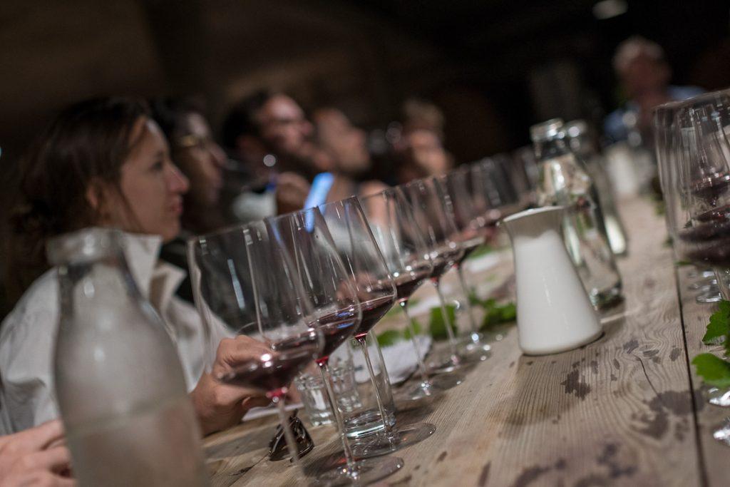 Weinblätter, Demeter-Wein, Verkostung, (c) organic17 Reinhard Gessl