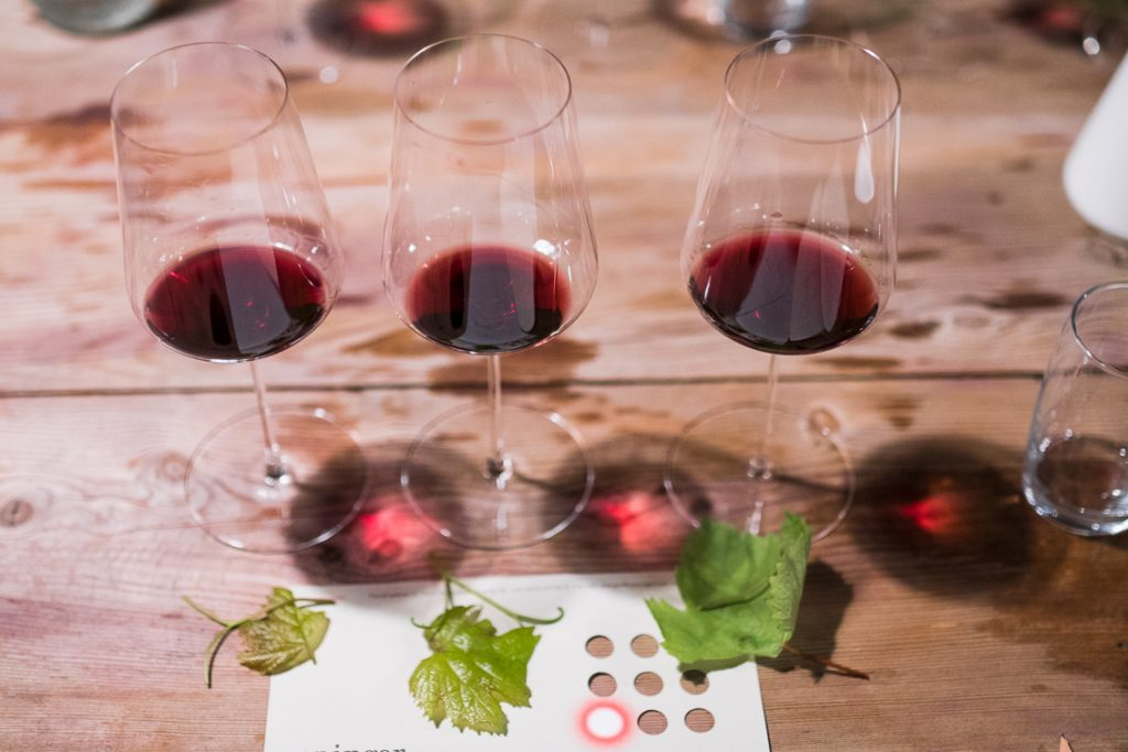 Weinblätter, Verkostung, Dürrau, Steiner, Kalkofen, Biowein Weninger (c) organic17 Reinhard Gessl
