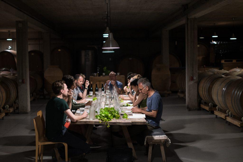 Weinblätter, Verkostung, Weingut Weninger (c) organic17 Reinhard Gessl